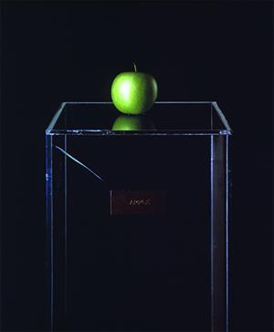 Yoko Ono apple 300x3641