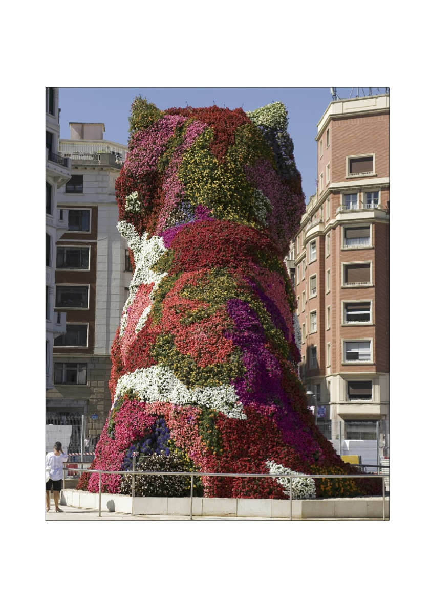 Photo of the back flower change of Puppy | Jeff Koons | Guggenheim Bilbao Museoa