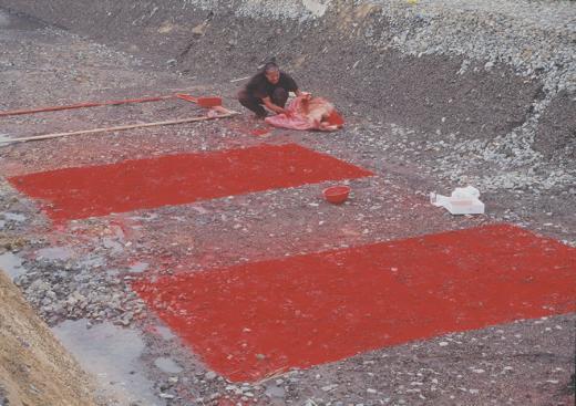 36 pigmentos evanescentes de sección áurea
